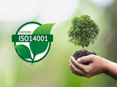 Dịch vụ tư vấn chứng nhận ISO 14001:2015: Hệ thống quản lý môi trường