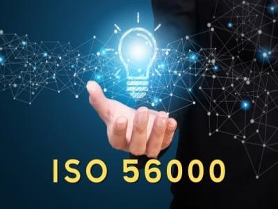 ISO 56000 - Bộ tiêu chuẩn quản lý đổi mới sáng tạo và điều cần biết