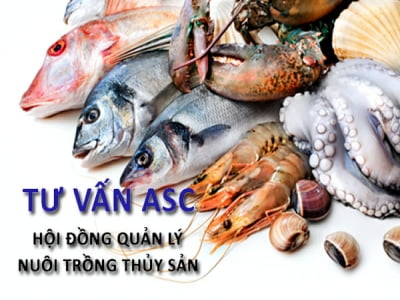 ASC - Hội đồng quản lý nuôi trồng thủy sản