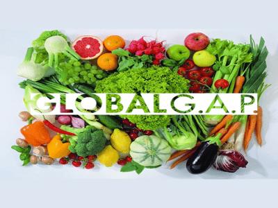 GLOBALG.A.P là gì ? Lợi ích của chứng nhận tiêu chuẩn GLOBALG.A.P