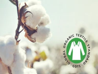 GOTS - Tiêu chuẩn dệt may hữu cơ toàn cầu