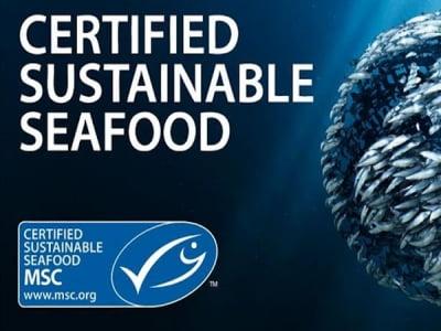 MSC - Hội đồng Quản lý biển
