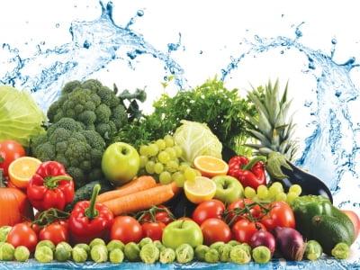 Tư Vấn Chứng Nhận Tiêu Chuẩn ISO 22000 - Food Safety Management System