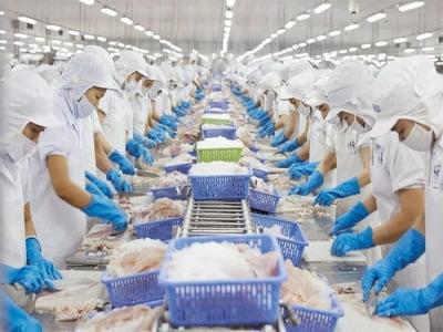 Tiêu chuẩn HACCP trong sản xuất và chế biến thực phẩm