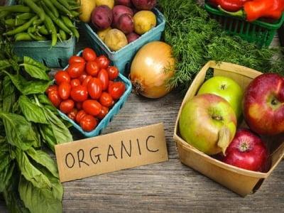 Những tổ chức nào được quyền cấp chứng nhận tiêu chuẩn Organic pet food