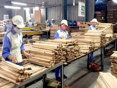 Tiêu chuẩn TLV - Timber Legality Verification ngành gỗ