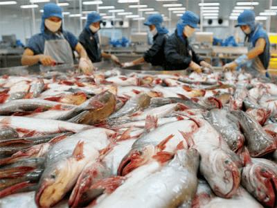 Lợi ích khi áp dụng tiêu chuẩn ASC - Aquaculture Stewardship Council